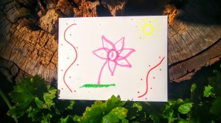 love flower sun postcard